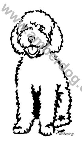 271x480 Spanish Water Dog Wall Sticker. No. T0221