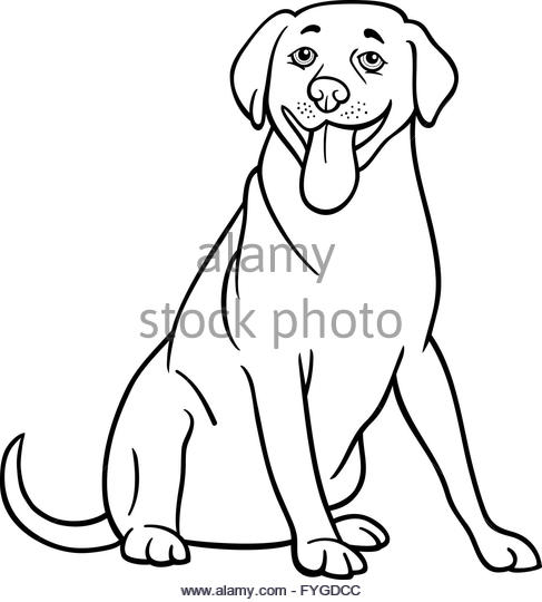 487x540 Labrador Retriever Cartoon Coloring Book Stock Photos Amp Labrador