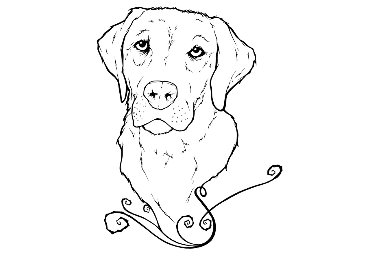 labrador puppy coloring pages | Labrador Line Drawing at GetDrawings.com | Free for ...