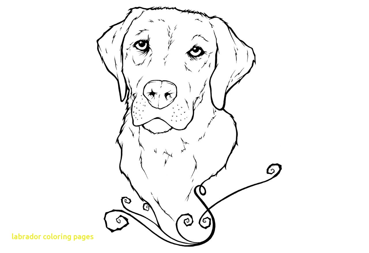 1280x880 Labrador Coloring Pages With Labrador Retriever Coloring Page