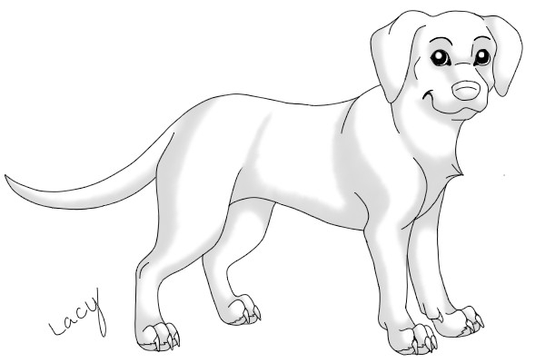 600x400 Labrador Retriever Lineart By Xx Lacy Xx