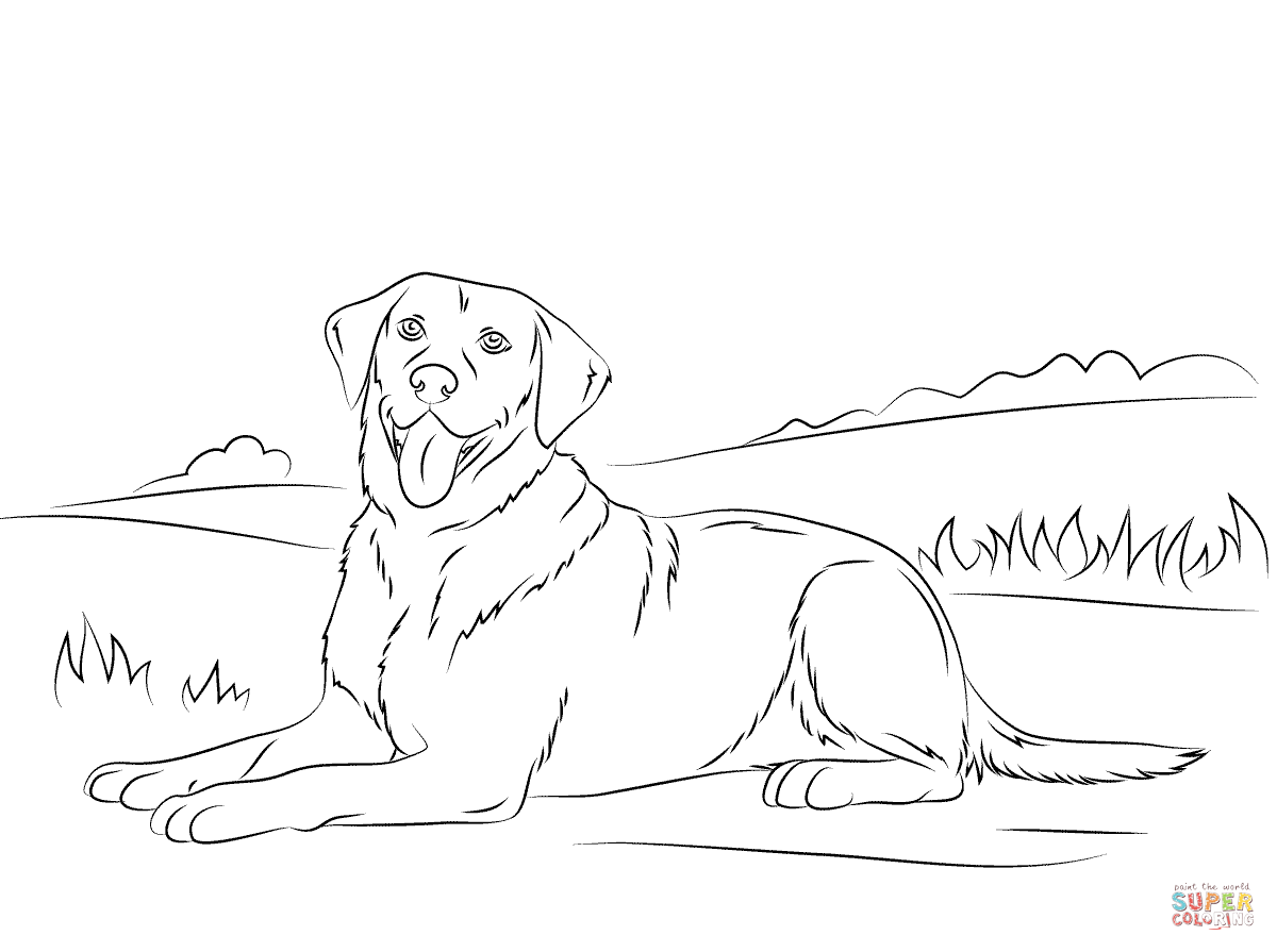 1200x895 Labrador Retriever Coloring Page Free Printable Coloring Pages