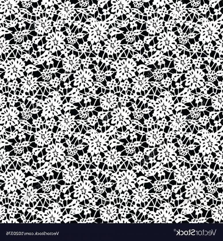 775x837 Best Free White Floral Lace On Black Background Vector Drawing