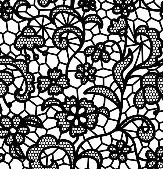 518x539 Beautiful Lace Black Pattern Vector 04