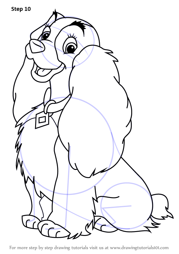 596x843 Learn How To Draw Lady From Lady And The Tramp (Lady And The Tramp
