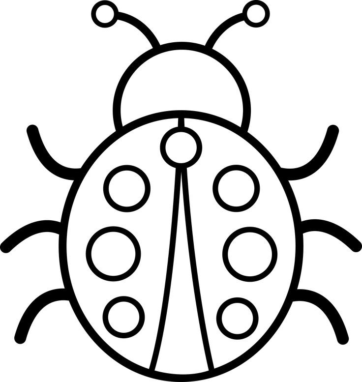 736x777 Marvellousspiration Bug Outline Beetle Clipart Pencil And