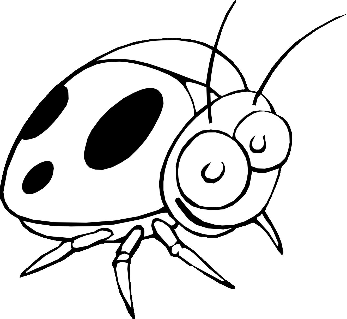 1331x1223 Ladybug Drawing Black And White Clipart Panda