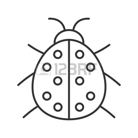 450x450 Ladybug Linear Icon. Thin Line Illustration. Ladybird Contour