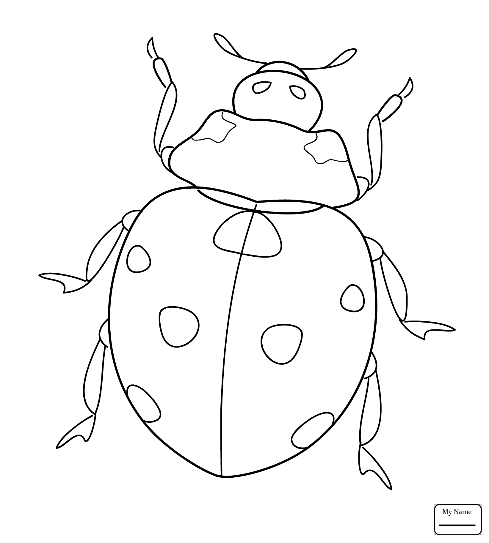 1644x1828 Coloring Pages Cute Ladybug Insects Ladybug