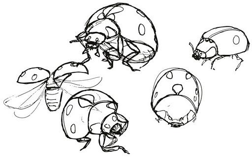 512x329 Ladybird Sketches Chris Fraser On Line