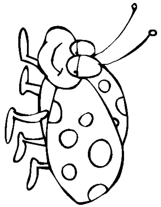 640x823 Best Photos Of Ladybug Coloring Template