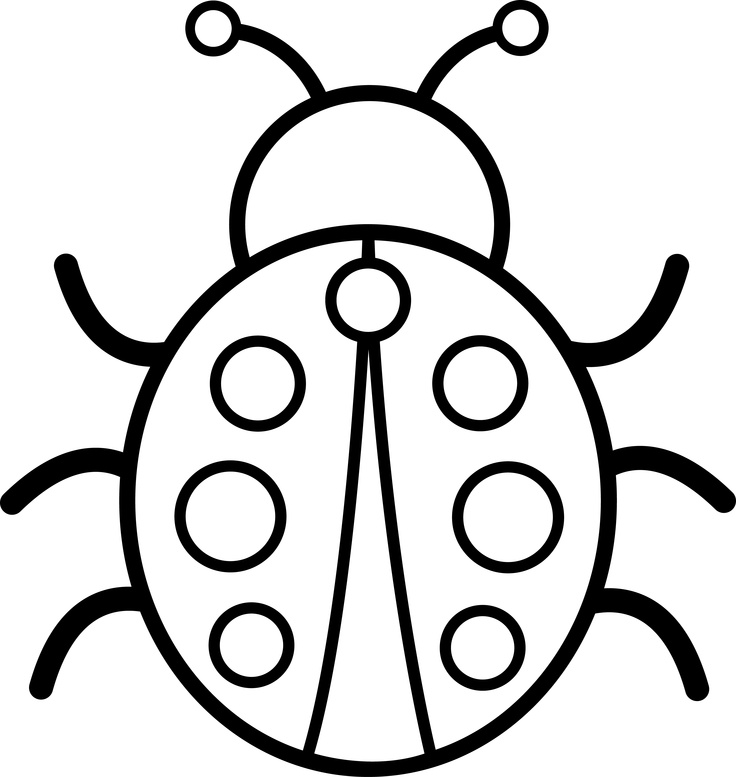 736x777 Ladybug Black And White Clipart Ladybug Drawing Black And White