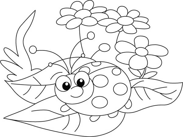 600x449 Lady Bug, Lady Bug And Three Beautiful Flower Coloring Page