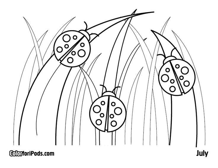 Ladybug Drawing For Kids at GetDrawingscom Free for personal use