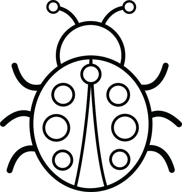 600x634 Ladybug Coloring Picture Coloring Page Ladybug Coloring Pages