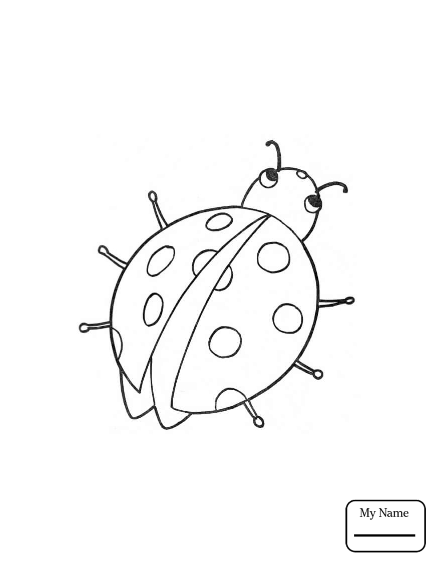 867x1122 Coloring Pages For Kids Insects Cartoon Ladybug Ladybug