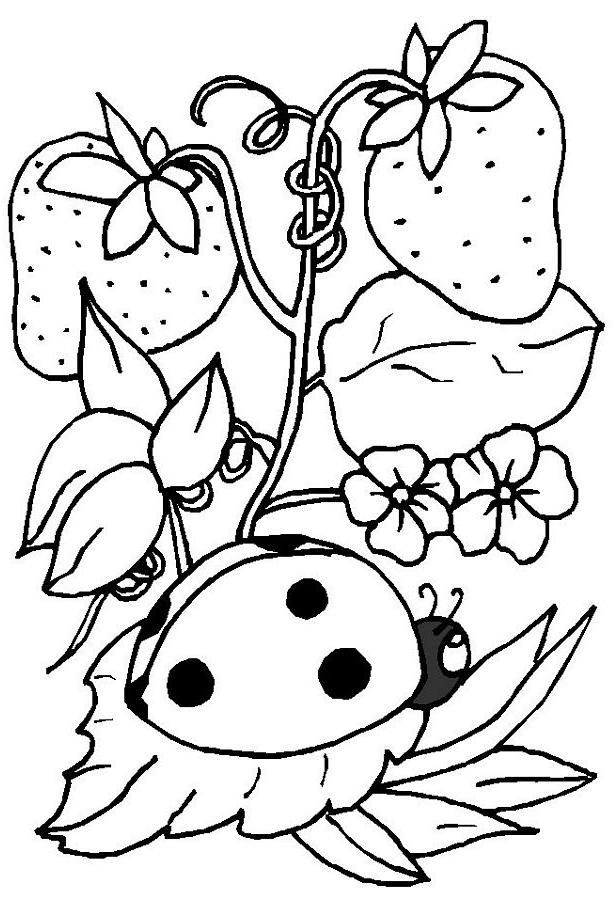612x900 Cute Ladybug Coloring Pages Preschool In Cure Draw Paint The Girl