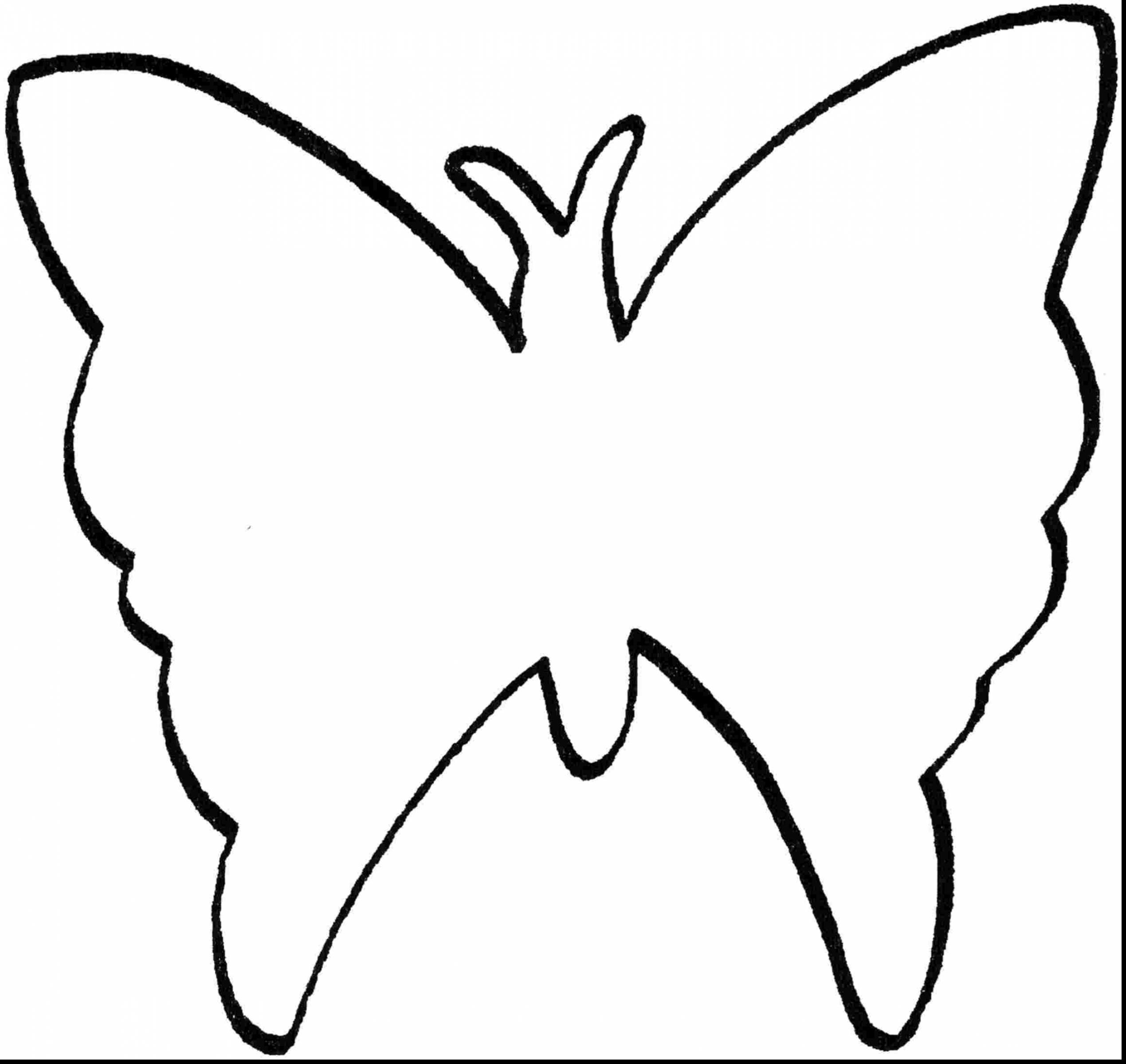 2539x2398 Dazzling Design Bug Outline Beautiful Butterfly Coloring Pages