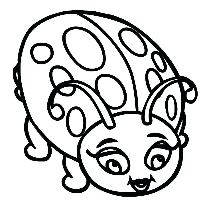 Ladybug Drawing Pictures at GetDrawings   Free download