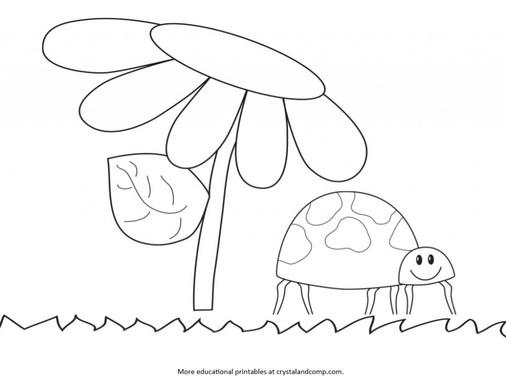 1024x784 Drawn Ladybug Kindergarten