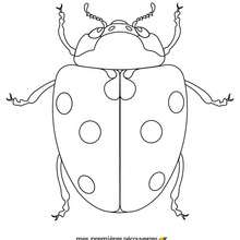 220x220 Ladybug Coloring Pages, Videos For Kids, Drawing For Kids, Kids