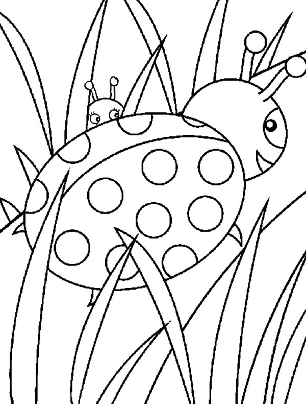 600x791 Ladybug Walking On Grass Coloring Pages Color Luna