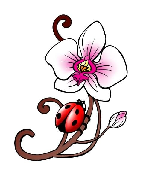 498x596 Cute Simple Designed And Colored Pink Orchid Flower With Ladybug