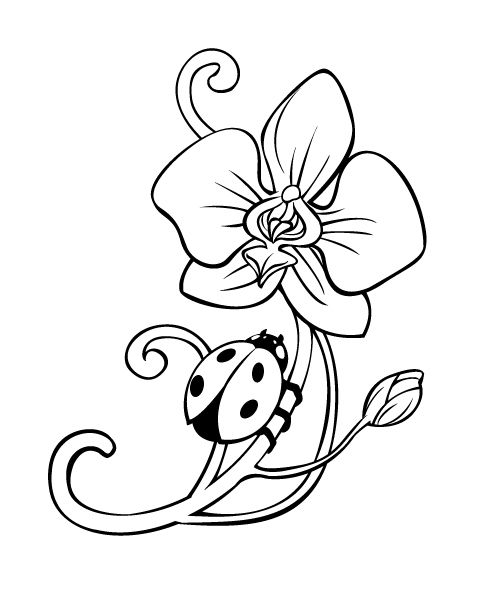 498x596 Orchid Tattoo Lineart By On @