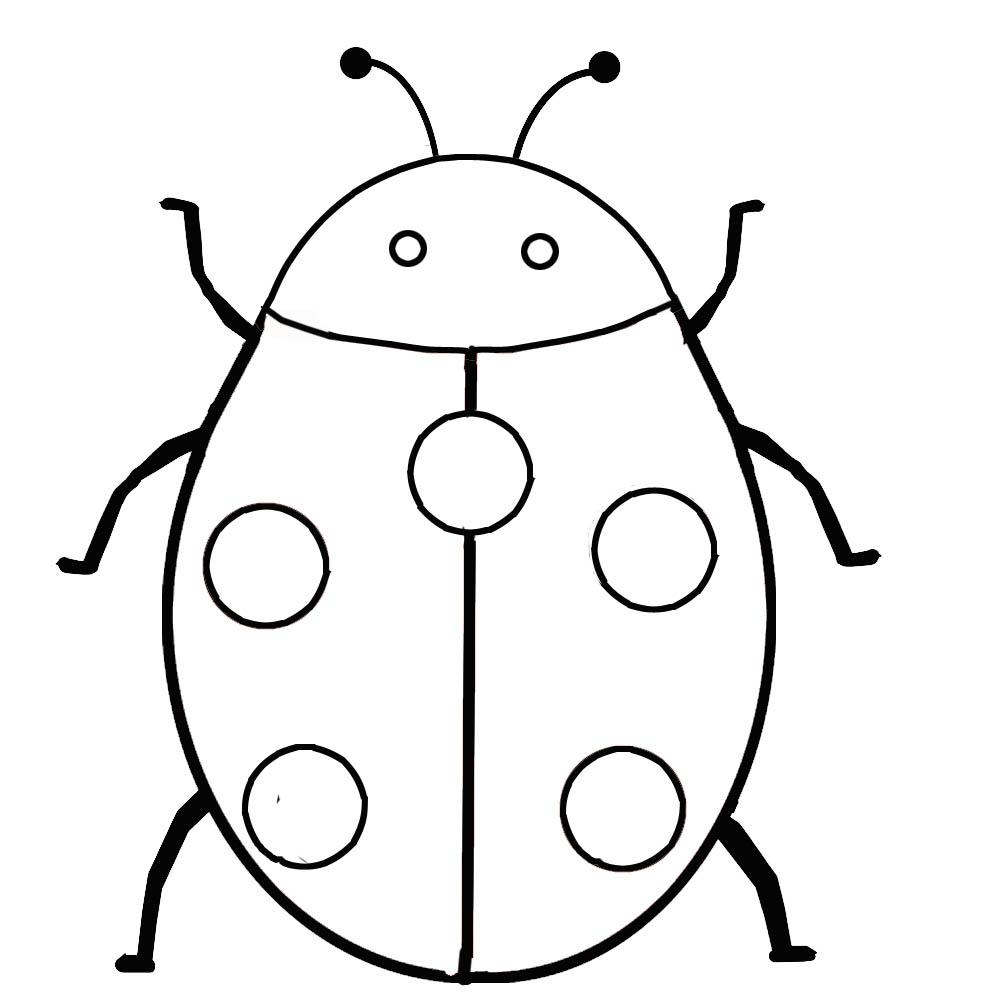 1000x1000 Pictures Of Ladybugs To Color