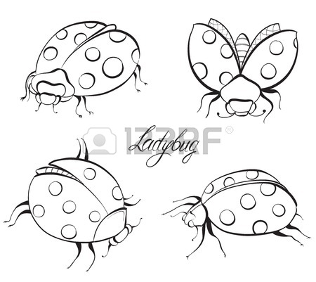 450x401 Sketch Of Ladybugs. Hand Drawn Vector Illustration. Royalty Free