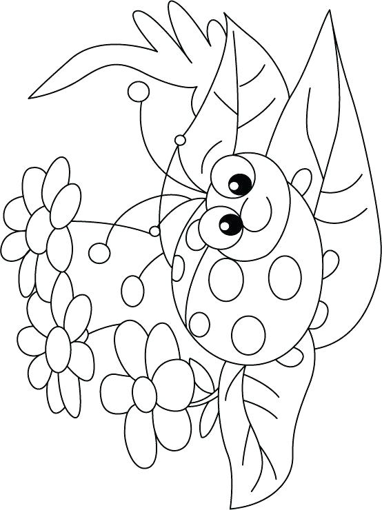 554x740 Ladybug Coloring Book And Amazing Ladybugs Coloring Pages