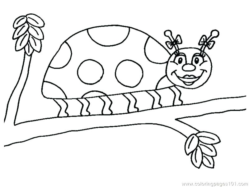 800x602 Ladybug Coloring Book Plus Lady Bug Coloring Pages Ladybug