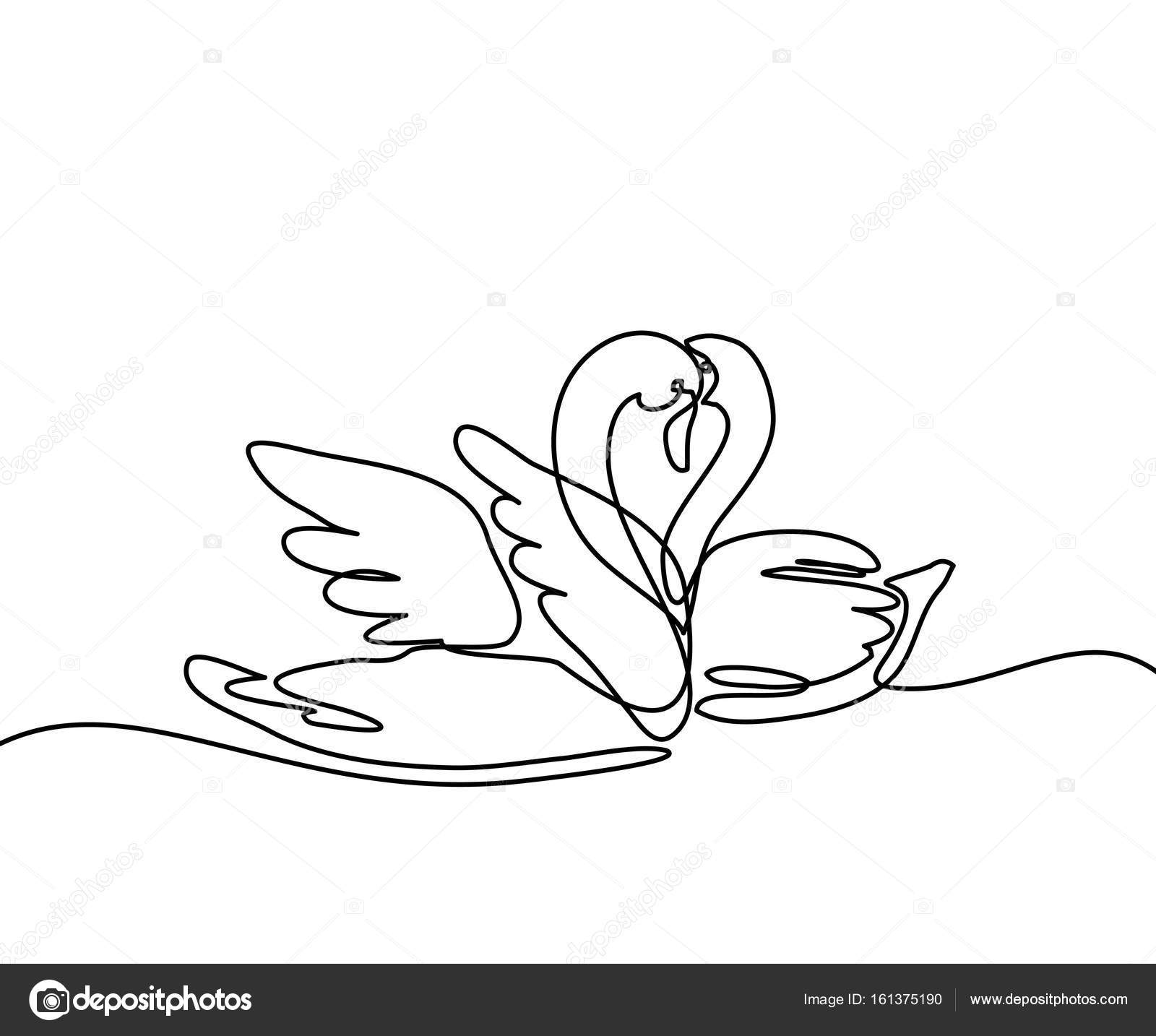 1600x1434 Two Swans Logo Stock Vector Valenty