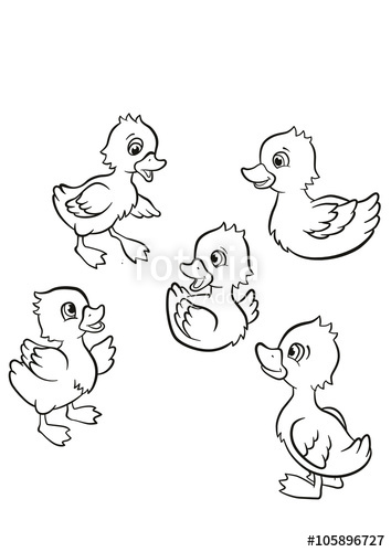 354x500 Coloring Pages. Five Little Cute Ducklings Swim On The Lake