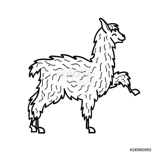 500x500 Vector Illustration. Cute Character Lama Stock Image And Royalty