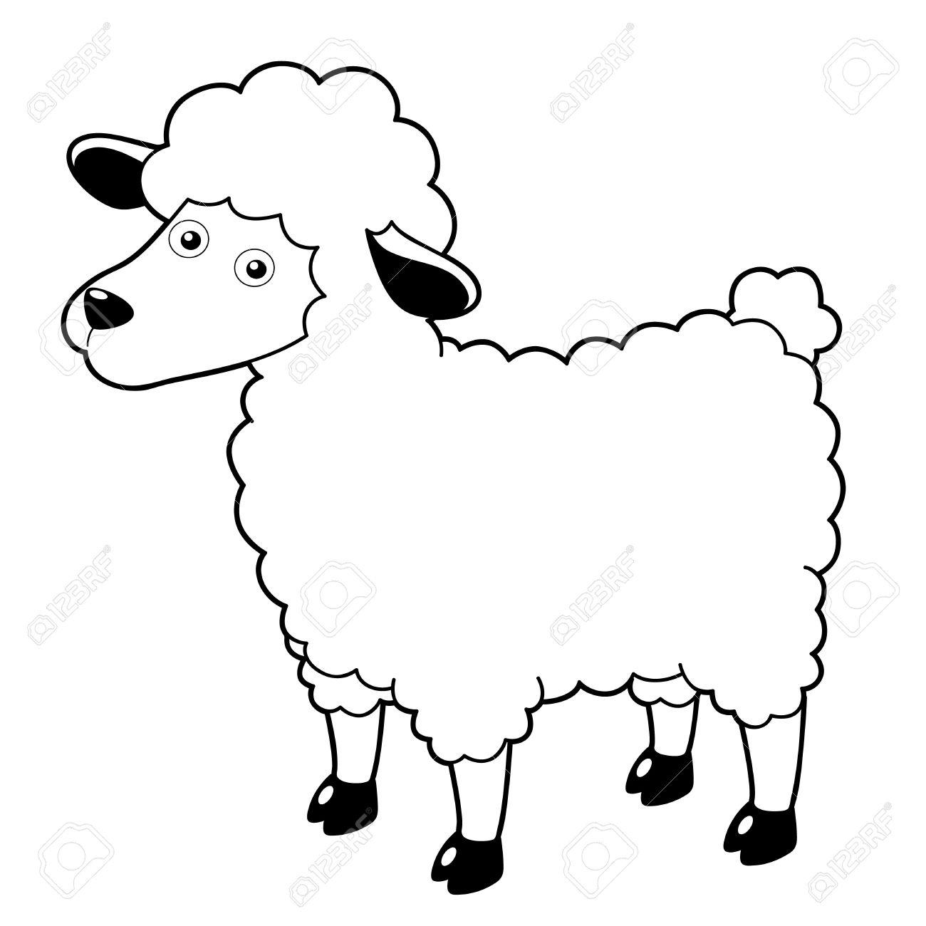 Lamb Cartoon Drawing at GetDrawings