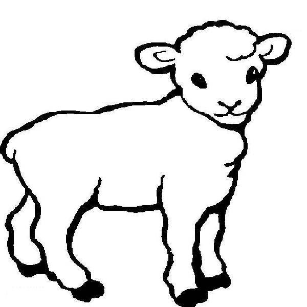 600x600 Lamb Coloring Pages Print Baby Shower Ideas Lambs