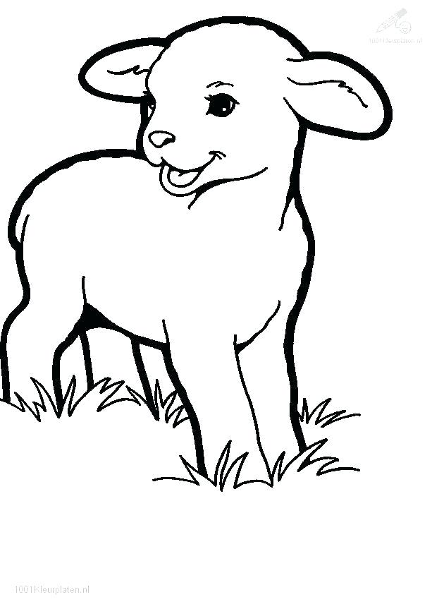 613x863 Lamb Pictures To Color New Lamb Coloring Page With Additional Line