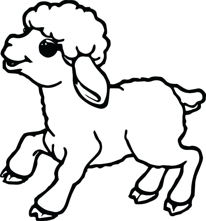 688x740 Minimalist Lamb Coloring Page Free Download Sheep Pages Cute Small