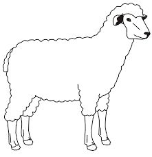 221x228 Sheep Coloring Pages Coloring Pages