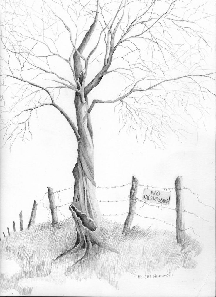 Landscape Charcoal Drawing