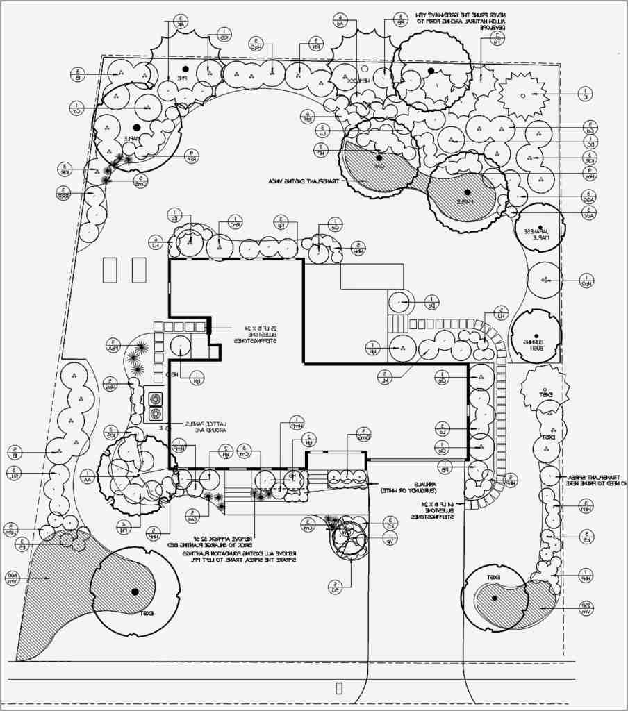 904x1024 Landscape Plan Drawing Clean Landscape Design Drawing Tools
