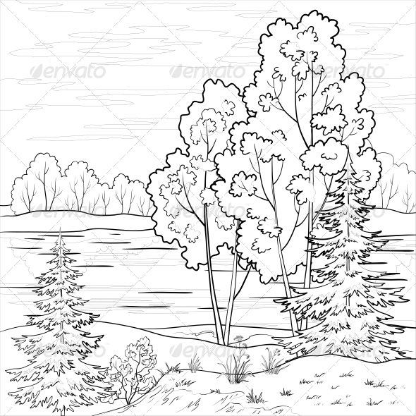 590x590 Landscape Of Forest And River Outline By Ok Sana Graphicriver
