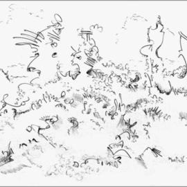 Landscapes Pencil Drawing
