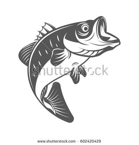 Largemouth Bass Drawing