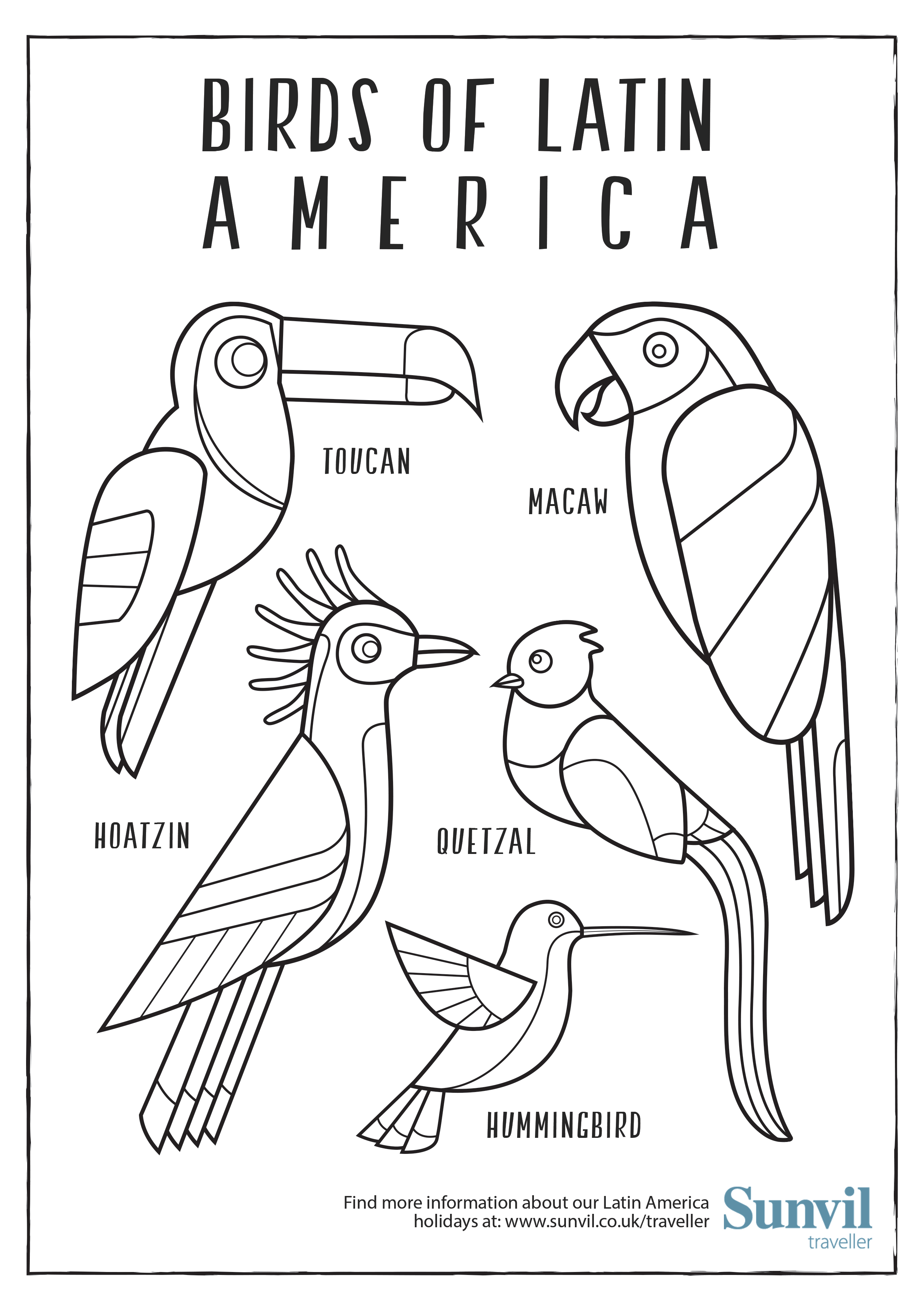 2480x3508 Birds Of Latin America Colouring Page