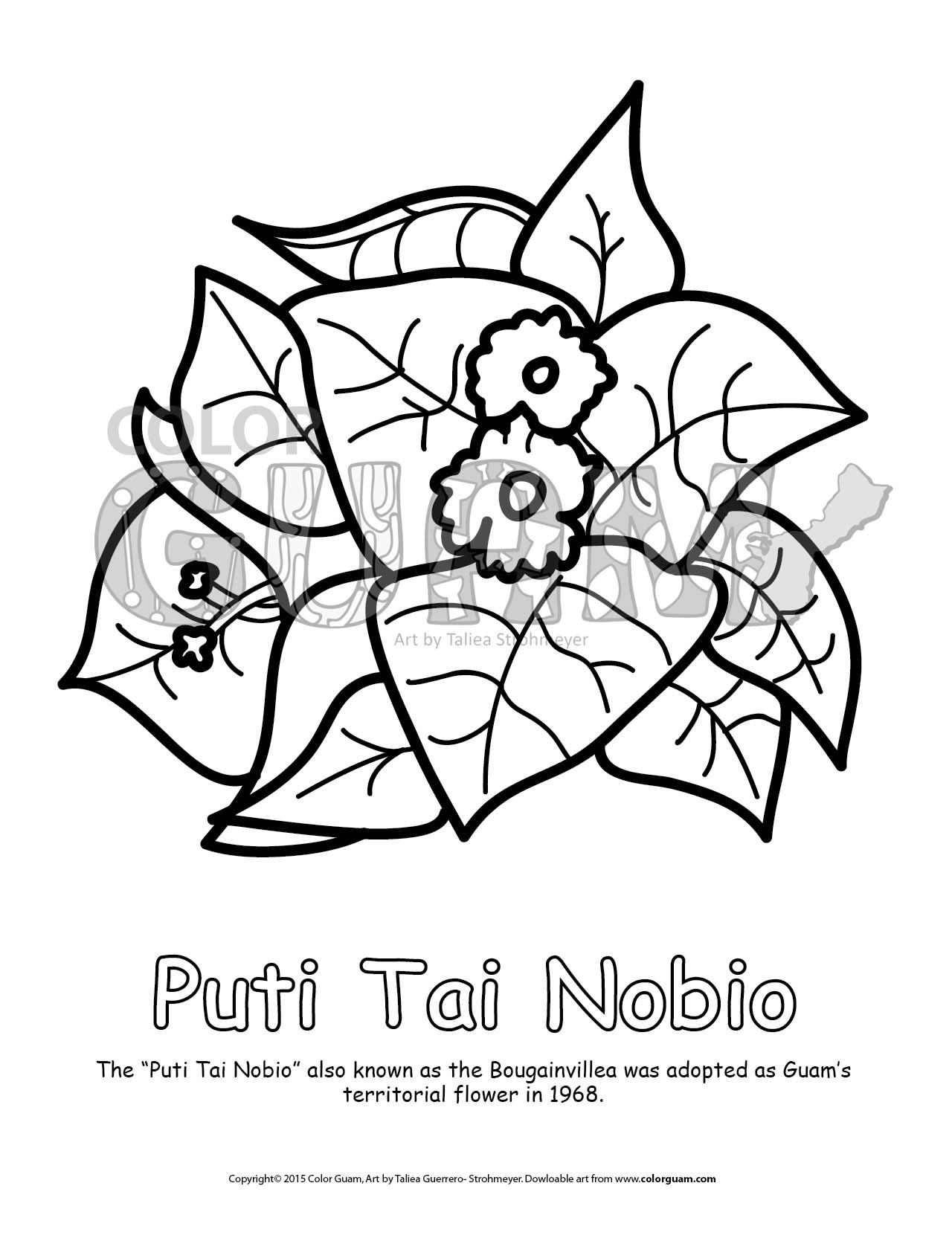 1280x1669 Puti Tai Nobio Color Guam
