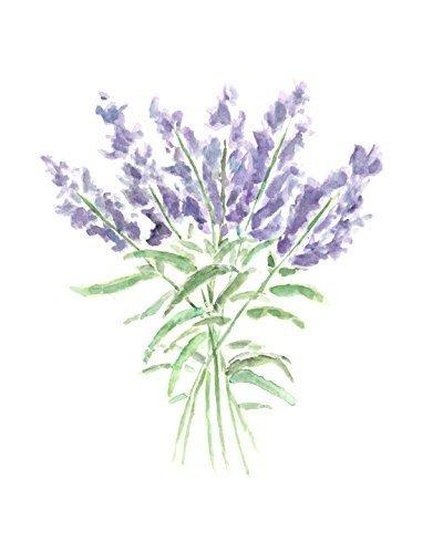 400x500 Lavender Flower Art Herb Kitchen Painting Watercolor