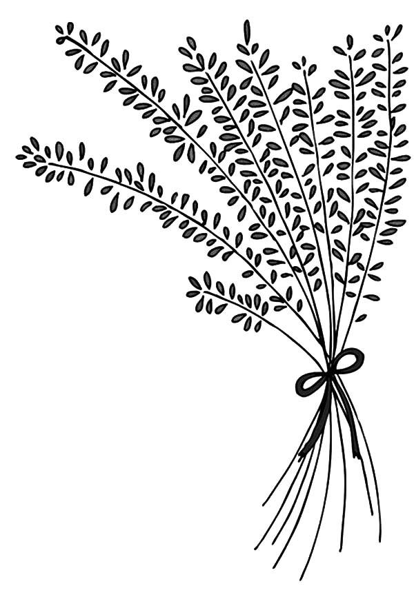 600x882 Lavender Flower Arrangement Coloring Pages