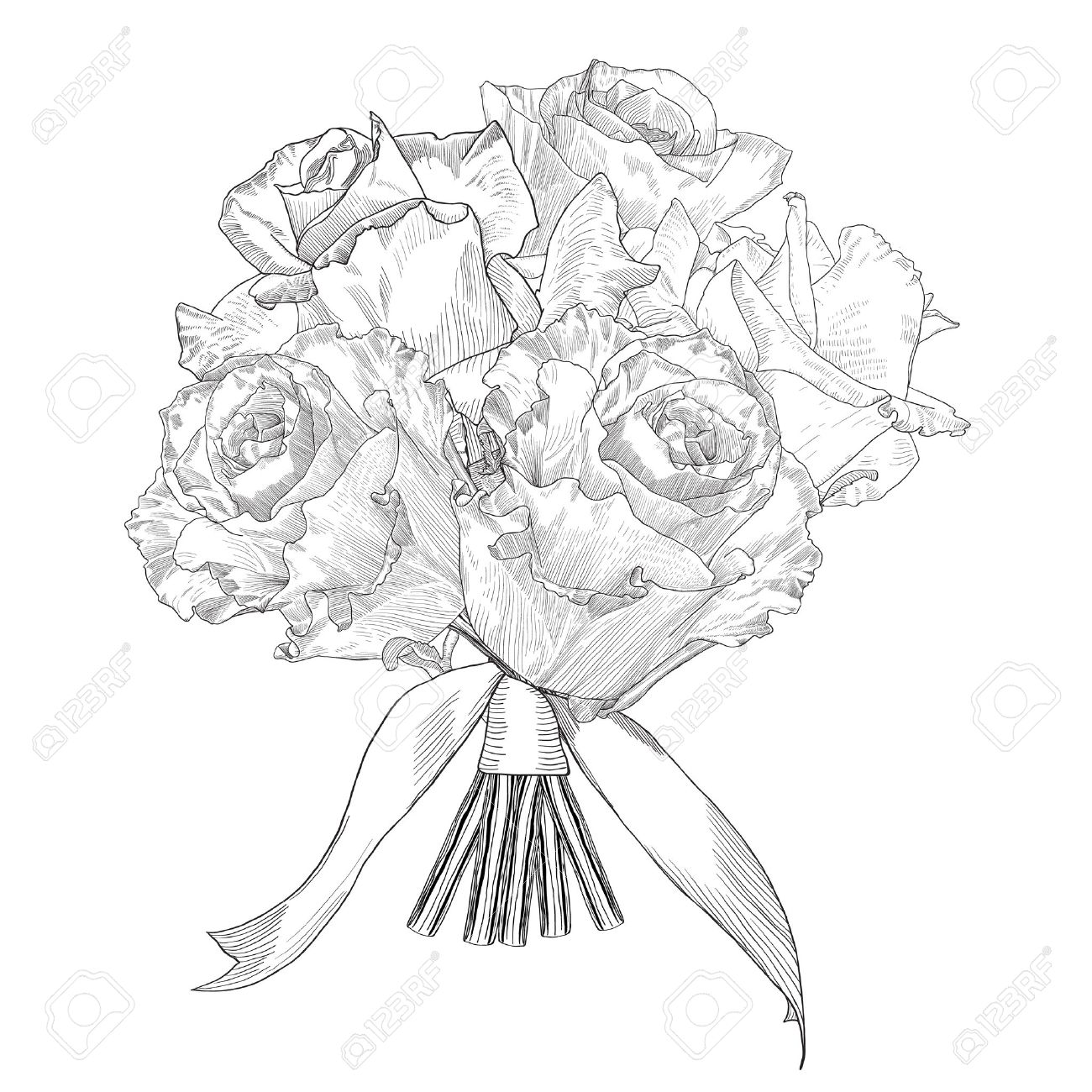 1300x1300 Hand Drawn Vector Bouquet Roses. Isolated Illustration With Fill